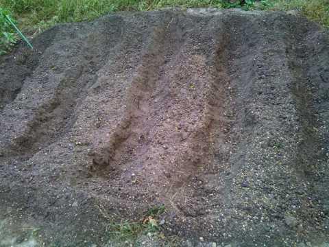 ガーデニング:実家の家庭菜園に大根・かぶ・ほうれん草の種蒔きをしました