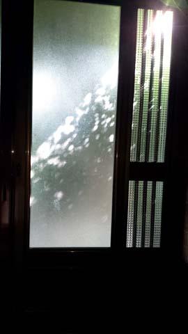 ガーデニング:玄関の戸のガラスにもみじのシルエット